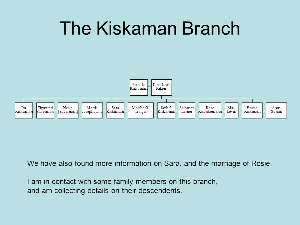The Kiskaman Branch Yankle. Kiskaman. Dina Leah. Kitzes. Ita. Zigmund. Silverman. Nellie. [Silverman]